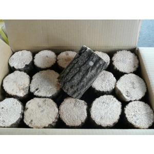 クヌギ ホダ木 産卵木 約8cm以上 30本1箱 SN100KA-30|dcats