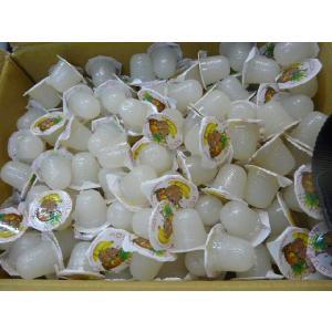 よく食べる ペロリアン 昆虫ゼリー(無着色)16g約500個 VN16-500|dcats|02