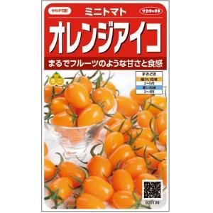 サカタのタネ オレンジアイコ ミニトマト