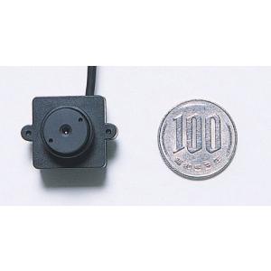 NSK 超小型防犯カメラ 【インテリアeye】 カラー NS-C13S (230)|ddshop