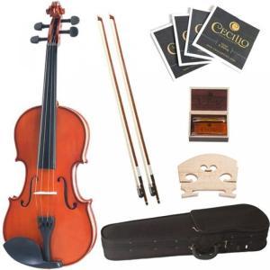 楽器 セシリオ社 Cecilio 1/32 CVN-100 Solid Wood Student Violin 輸入品|dean-store