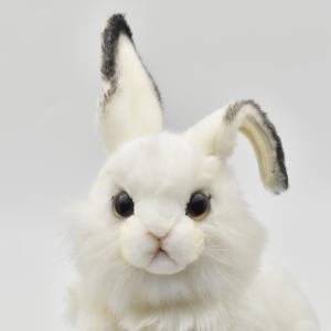 シロウサギ うさぎ 30 動物 ぬいぐるみ HANSA ハンサ 夏休み 帰省 プレゼント お土産 dearbear 07