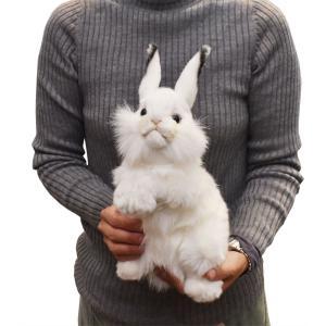 シロウサギ うさぎ 30 動物 ぬいぐるみ HANSA ハンサ 夏休み 帰省 プレゼント お土産 dearbear 09