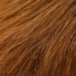HANSA ハンサ 3540 ライオン 38|dearbear|05
