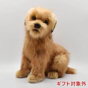 HANSA ハンサ ノーフォークテリア 子 犬 3996 ギフト対象外 リアル 動物 ぬいぐるみ プレゼント ギフト 母の日 父の日|dearbear