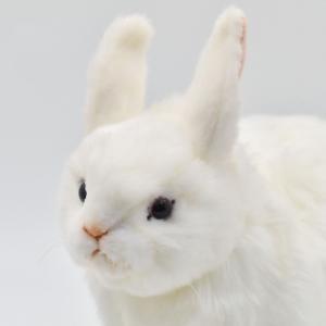 ユキウサギ うさぎ 35 動物 ぬいぐるみ HANSA ハンサ 夏休み 帰省 プレゼント お土産|dearbear|04