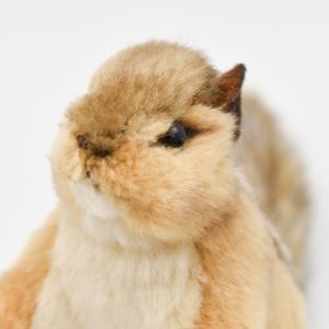 シマリス 12 リアル 動物 ぬいぐるみ HANSA ハンサ プレゼント|dearbear|04