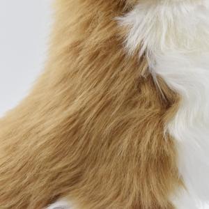 チワワ 犬 31 動物 ぬいぐるみ HANSA ハンサ 夏休み 帰省 プレゼント お土産 dearbear 05