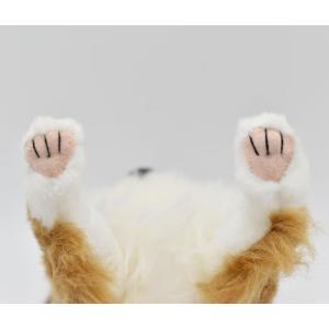 チワワ 犬 31 動物 ぬいぐるみ HANSA ハンサ 夏休み 帰省 プレゼント お土産 dearbear 06