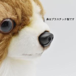 チワワ 犬 31 動物 ぬいぐるみ HANSA ハンサ 夏休み 帰省 プレゼント お土産 dearbear 07