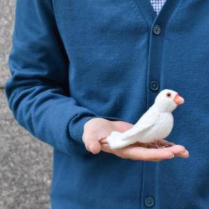 シロブンチョウ 鳥 13 動物 ぬいぐるみ HANSA ハンサ 夏休み 帰省 プレゼント お土産|dearbear|09