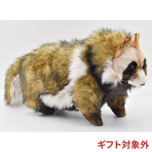 HANSA ハンサ タヌキ 7256 リアル 動物 ぬいぐるみ ギフト対象外|dearbear