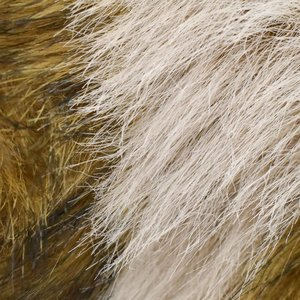 HANSA ハンサ タヌキ 7256 リアル 動物 ぬいぐるみ ギフト対象外|dearbear|05