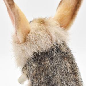 トビネズミ 19 動物 ぬいぐるみ HANSA ハンサ 母の日 新生活 プレゼント お土産 お祝い|dearbear|05