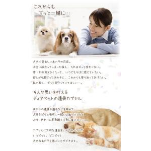 【3行刻印入り】ペット 遺骨カプセル シルバー...の詳細画像1