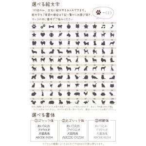 【3行刻印入り】ペット 遺骨カプセル シルバー...の詳細画像3