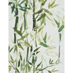 輸入壁紙  ESPOIR NEW AGE  国内在庫 219462 竹 水彩画 緑 アジアンテイスト CASAMANCE テシード DIY |decoall
