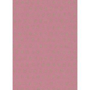 PIPSTUDIO4  375033 輸入壁紙 昆虫柄 ピンク ゴールドてんとう虫 キッズ こども部屋  DIY 貼ってはがせる オランダ製 10m巻|decoall