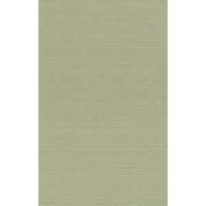 rasch 2020 輸入壁紙 401851 ライトグリーン グリーン 緑 無地 クロス 10m巻 DIY はがせる ドイツ製  国内在庫品|decoall