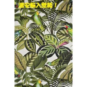 壁紙 rasch 2018 Fakes  花鳥柄 グリーン 観葉植物 439533  輸入 クロス DIY|decoall
