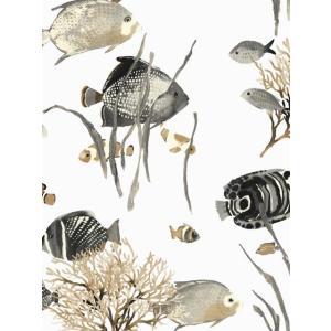 輸入壁紙 魚柄ホワイト ASHFORDTROPICS AT7000|decoall