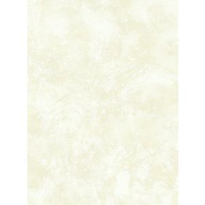 輸入壁紙  ESPOIR NEW AGE  国内在庫 GC32405 ホワイトゴールド まだら模様 塗り壁風 モダン WALLQUEST テシード DIY |decoall