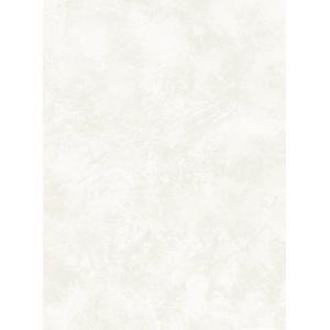 輸入壁紙  ESPOIR NEW AGE  国内在庫 GC32410 ホワイトシルバー まだら模様 塗り壁風 モダン WALLQUEST テシード DIY |decoall