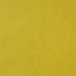 輸入壁紙 無地・単色グリーン GIRLS Only(ガールズオンリー) GLN50977218|decoall
