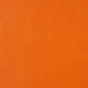 輸入壁紙 無地・単色オレンジ GIRLS Only(ガールズオンリー) GLN54103110|decoall