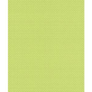 はじめての輸入壁紙DIYセット ドイツrasch(ラッシュ) 黄緑 ドット柄 水玉 442335 クロス DIY rasch2019 はがせる|decoall