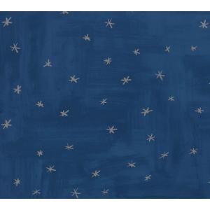 PICTUREBOOK W581-03 ネイビーブルー スター 星 グラデーション 塗り絵風 キッズ 子供部屋 絵本 輸入壁紙 クロス 貼って剥がせる 10m|decoall