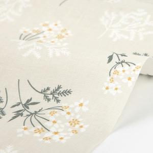 いつもは脇役のホワイトレースフラワーを優しく描いた「Lace flower(レースフラワー)」。 彩...