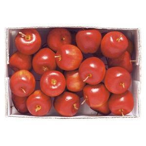 35mm アメリカンアップルピック(24本パック)(VF0153S)[食品サンプル フェイクフード ディスプレイ フルーツ りんご 林檎 アップル]|decorationlabo