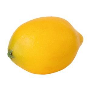 (食品サンプル・フルーツ・野菜)レモン...