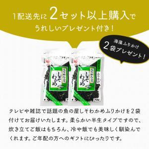 たい タイ 鯛 お茶漬け セット 長崎牧島美鯛茶漬け3種6食セット 冷凍便送料無料 ごちそう ギフト|dejimaya-netstore|04
