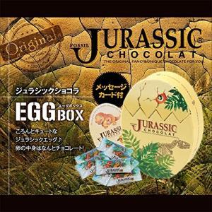 恐竜のチョコレート ジュラシックショコラ エッグBOX [バレンタイン 恐竜 おもしろチョコレート]