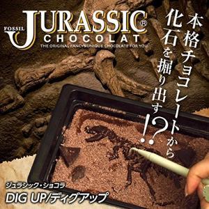 恐竜のチョコレート ジュラシックショコラ ディグアップ [バレンタイン 恐竜 おもしろチョコレート]