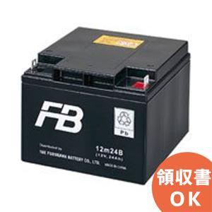 12m24B 古河電池製 小型制御弁鉛蓄電池 mシリーズ|denchiya