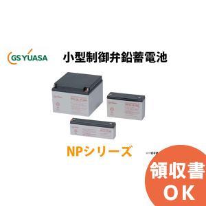 【受注品】NP3-6  GSユアサ製 小形制御弁式鉛蓄電池  NPシリーズ【キャンセル返品不可】|denchiya