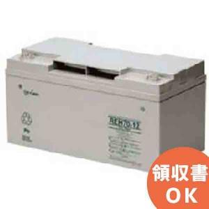 REH24-12 GSユアサ製 制御弁式鉛蓄電池 REHシリーズ|denchiya