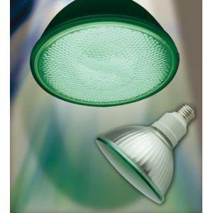 生産完了品 ジェフコム ケース販売 10個セット 蛍光ランプ形ビーム電球 PAR38型 120W相当 E26口金 グリーン EFR23-SG_set|dendenichiba