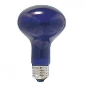 アサヒ 耐熱透明カラー球(内面フロストタイプ) R80 110V60W 口金:E26 ブルーフロスト R80 E26 110V-60W(BT)|dendenichiba