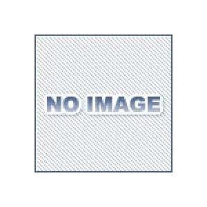 アネスト岩田 AJQ-02PFF エアー用クイックジョイント プラグ dendouki2