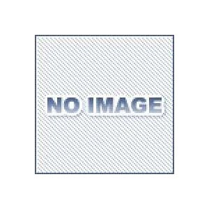 アネスト岩田 AJQ-02SN エアー用クイックジョイント ソケット dendouki2