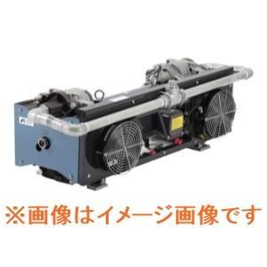 アネスト岩田 GVS-1000E 汎用ドライスクロール真空ポンプ dendouki2