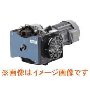 アネスト岩田 GVS-250 汎用ドライスクロール真空ポンプ dendouki2