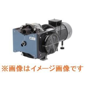アネスト岩田 GVS-501E 汎用ドライスクロール真空ポンプ dendouki2