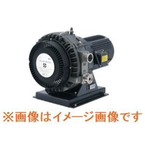 アネスト岩田 ISP-1000E スクロールマイスター dendouki2