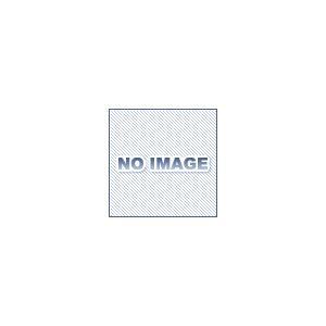 ハンマーキャスター 429S-N100|dendouki2