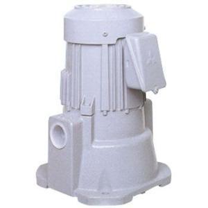 テラル多久 (旧 三菱電機) NPJ-400E 三相200V クーラントポンプ (自吸形流量タイプ)|dendouki2